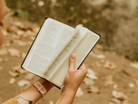 Vergessene Bücher für Leser von heute: Romantiker kann jeder sein