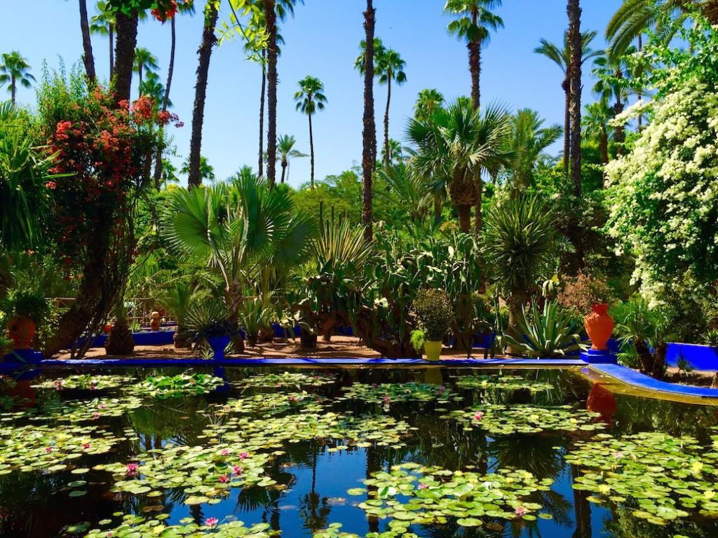 marrakech-jardins-majorelle-exploratrices