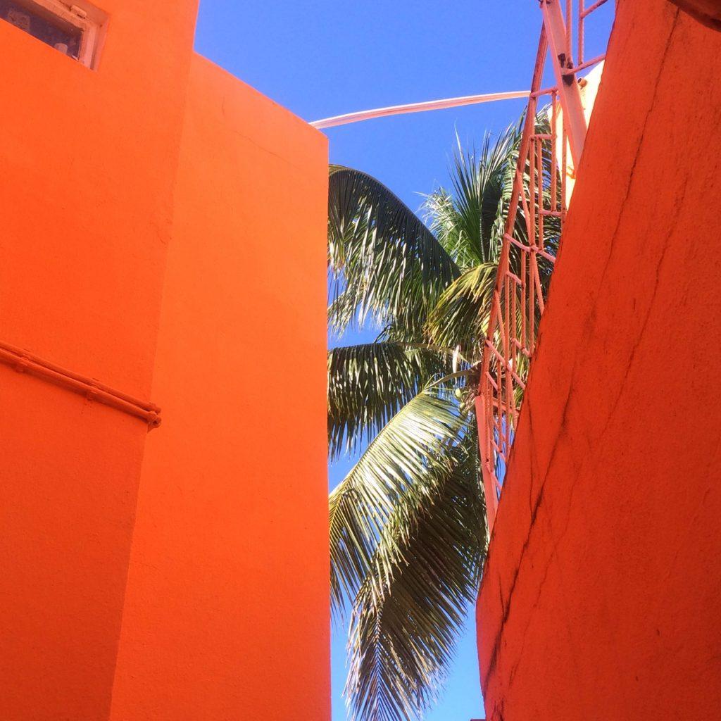 les-exploratrices-maurice-tamarin-chez-jacques-palmier