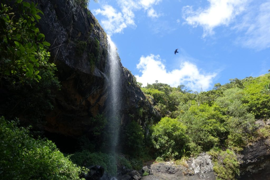 les-exploratrices-maurice-tamarin-falls-cascade-rapace
