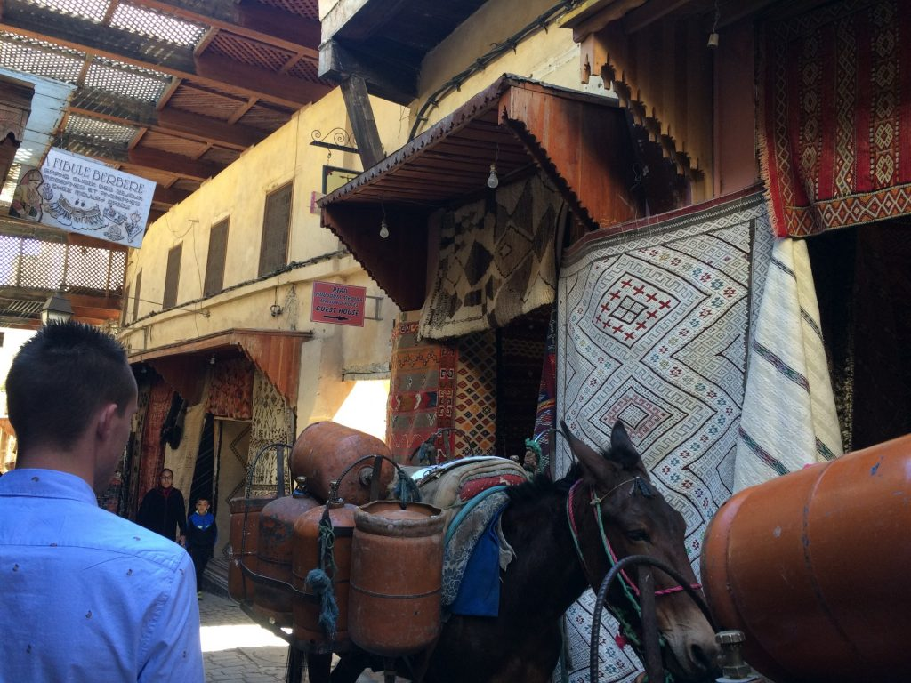 les-exploratrices-maroc-fes-medina-ane