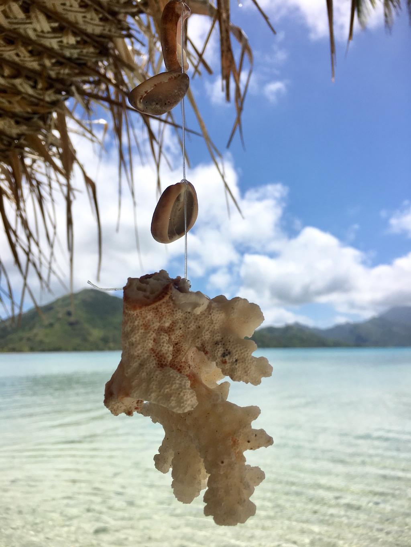 huahine-corail