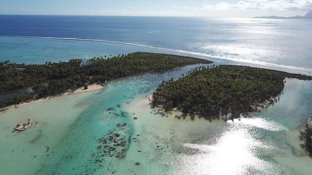 jardin-corail-tahaa-raiatea