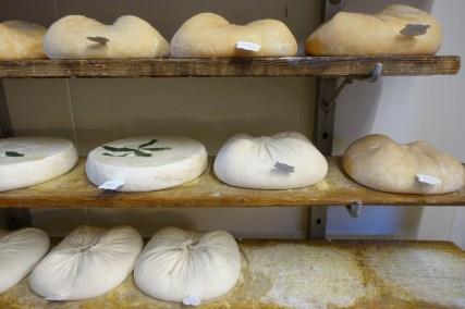 dracenie-ferme-pastourelle-fromages