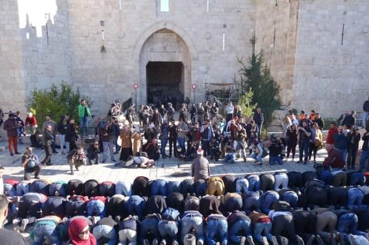 temoin de paix photo neuf pray for Jerusalem