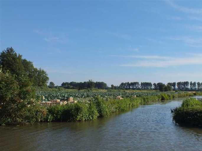 Découverte du marais de Saint-Omer