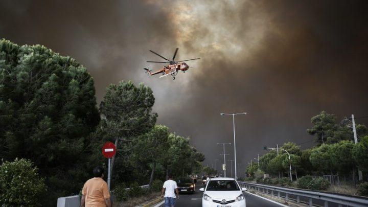 Les forêts européennes ne peuvent pas freiner davantage le réchauffement
