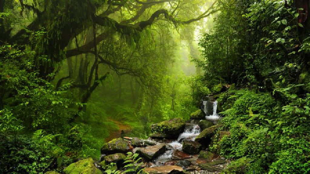 La COP25 va à ouvrir une année cruciale pour le climat