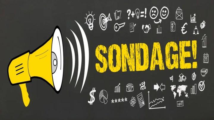 Enquête sur le réseau consulaire (aides, bourses, accueil, etc.) – Participez