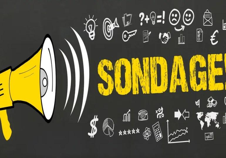 Enquête sur le réseau consulaire (aides, bourses, accueil, etc.) - Participez