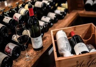 Sanctions américaines : les viticulteurs bénéficieront du fonds de solidarité, selon Bruno Le Maire