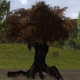 Huorn noir avec essaim