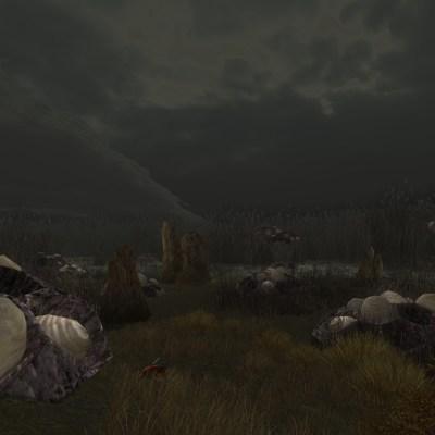 Une colonie de nibricqueux