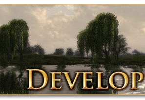 Dev Diary : Changements de combat