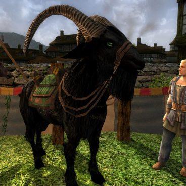 Chèvre des Chutebrise - 40 jetons du festival