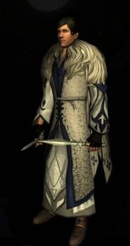 Robe ornée de l'hiver