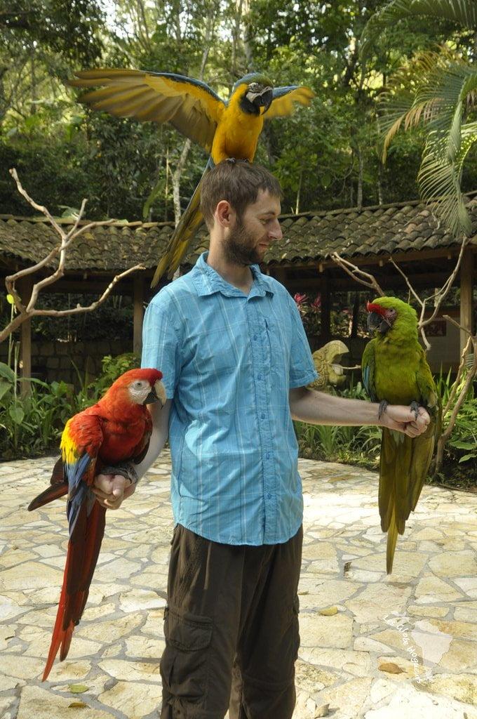 Seb et ses nouveaux amis
