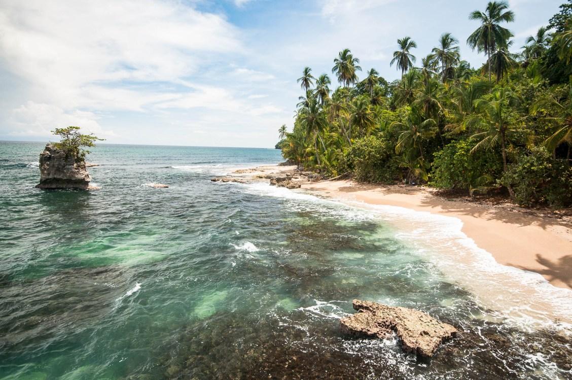 côte plage palmier Cahuita