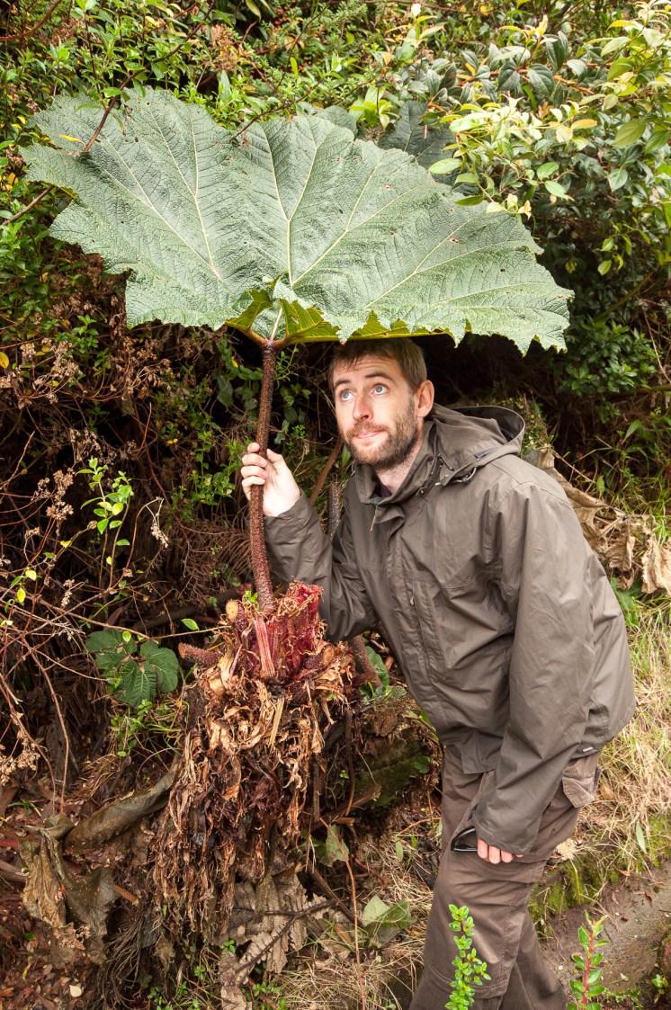 Heureusement notre aventurier maîtrise l'art du camouflage