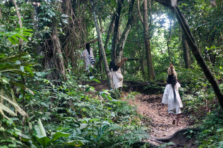 indiens tayrona forêt