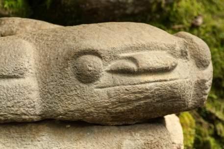 san agustin pierre grenouille