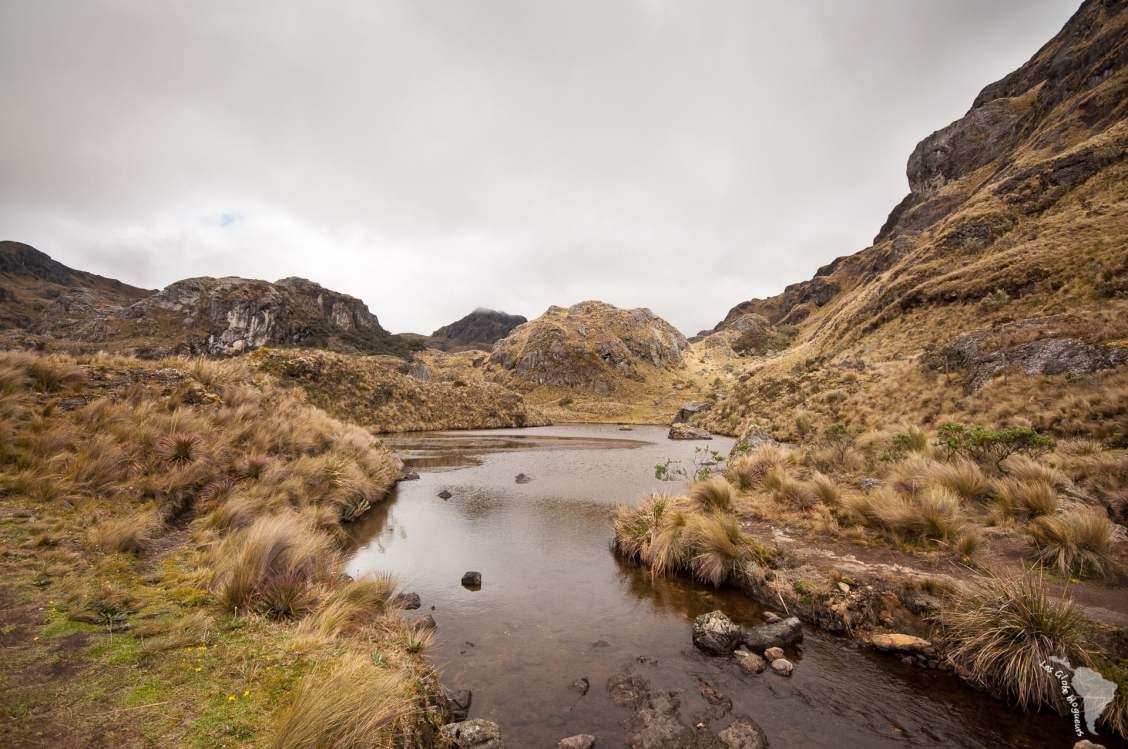 rivière el cajas