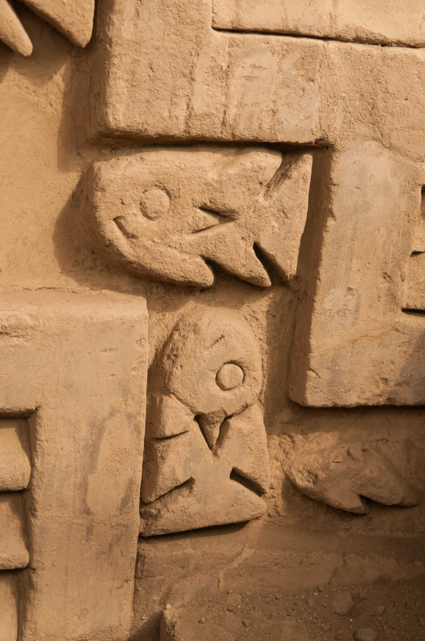 Chan-chan-detail-poisson