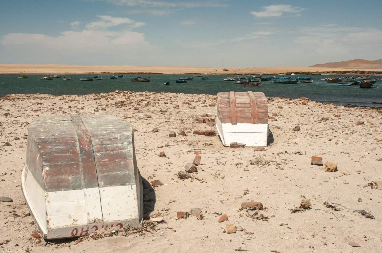 desert paracas