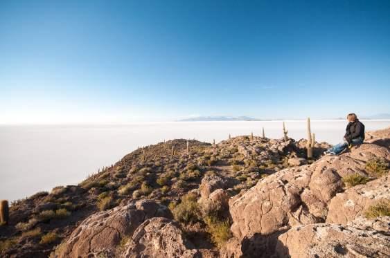 île roche cactus