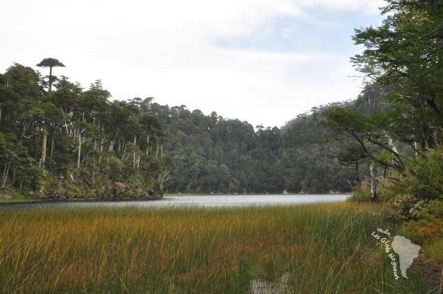Lac Parc huerquehue