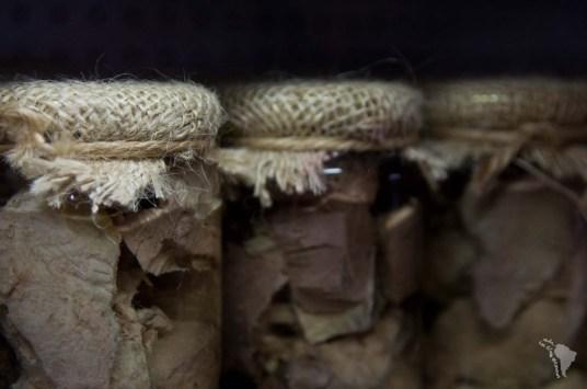 thon artisanal bocal conserve malte