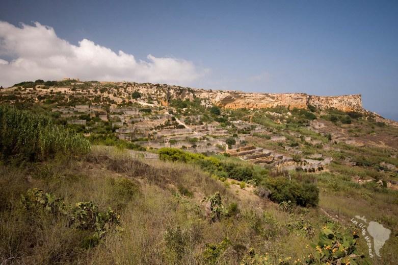 Terrasses agricoles près de San Blas bay