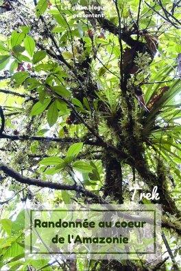 Trek en Amazonie équatorienne