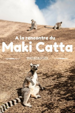 La réserve d'Anja à Madagascar