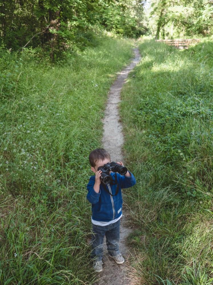 sentier des castors réserve naturelle des ramières
