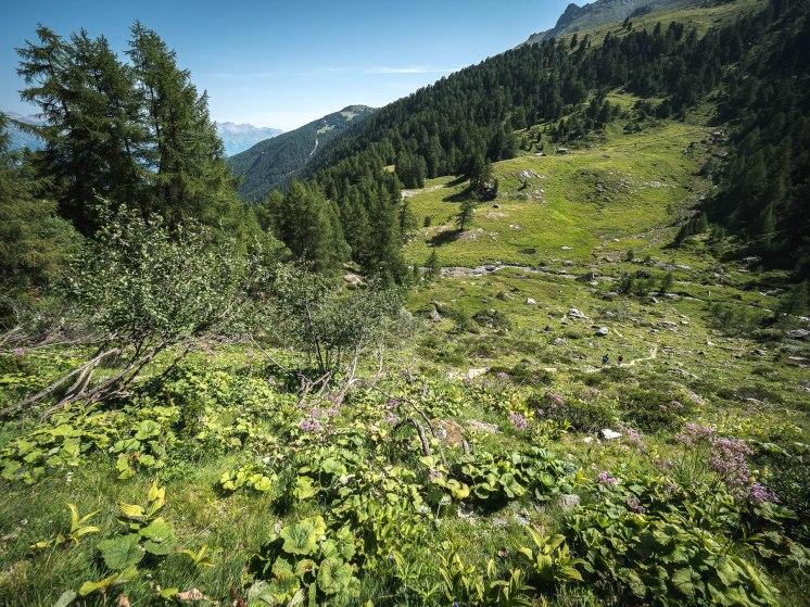 descente buvette de la lé vallon de réchy suisse