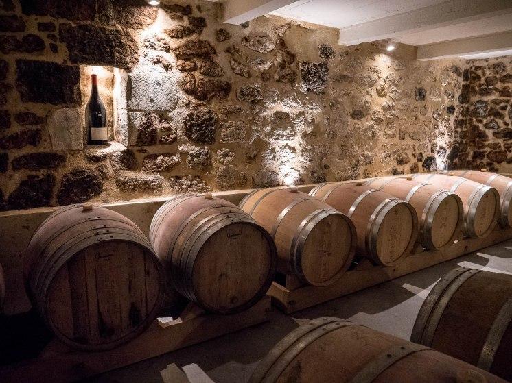 Dégustation des vins d'Aubance et Anjou Village près d'Angers