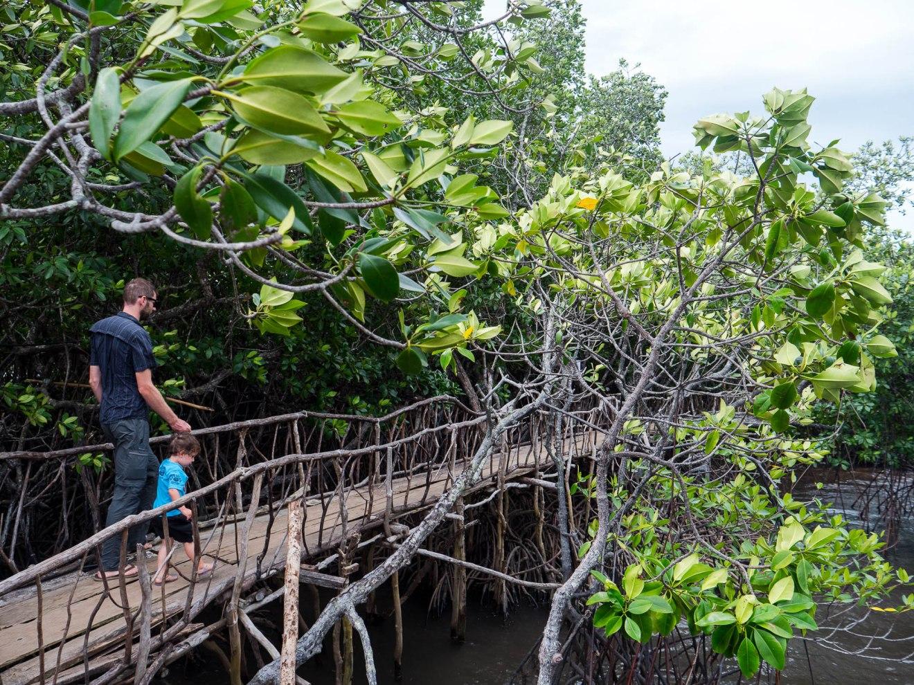 Itinéraire de voyage à Palawan - Philippines