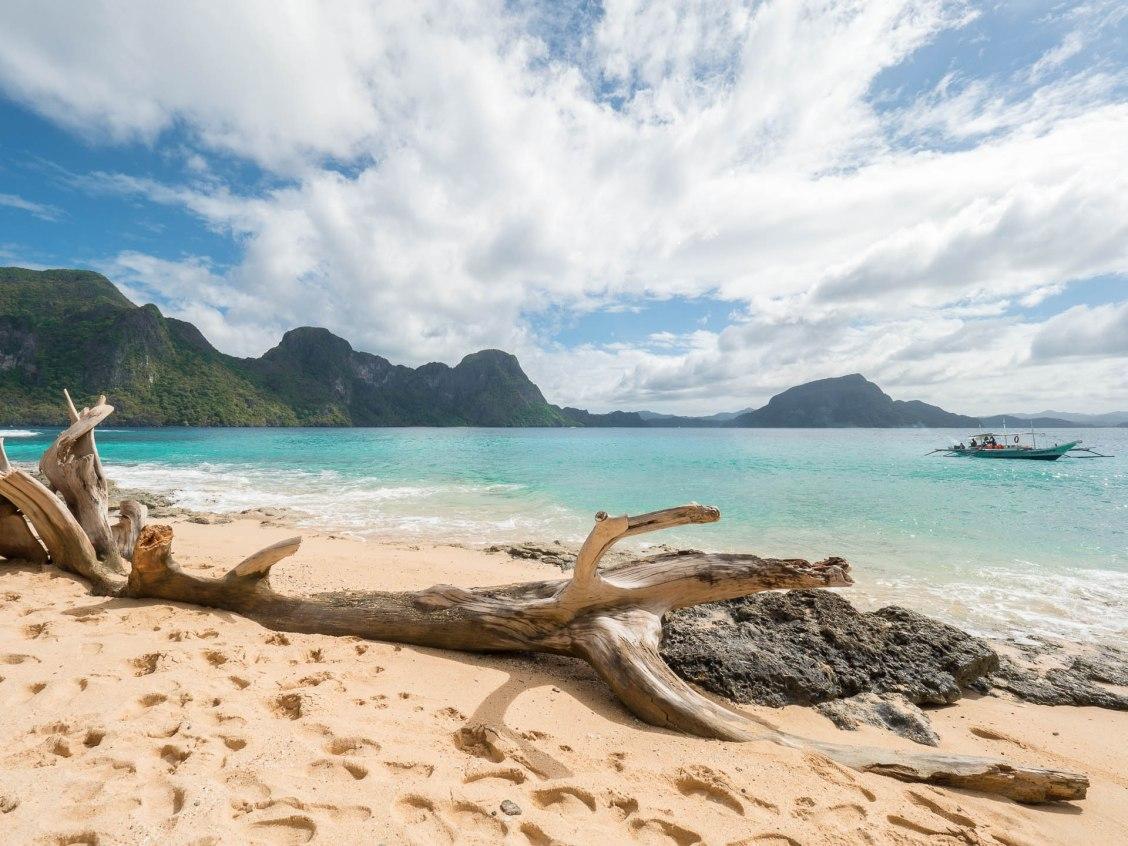 El nido helicopter island plage arbre