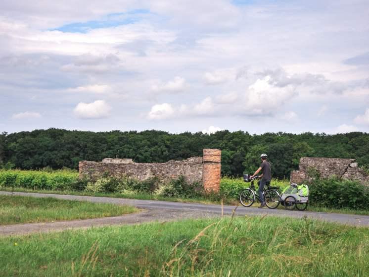 Vignoble vélo route