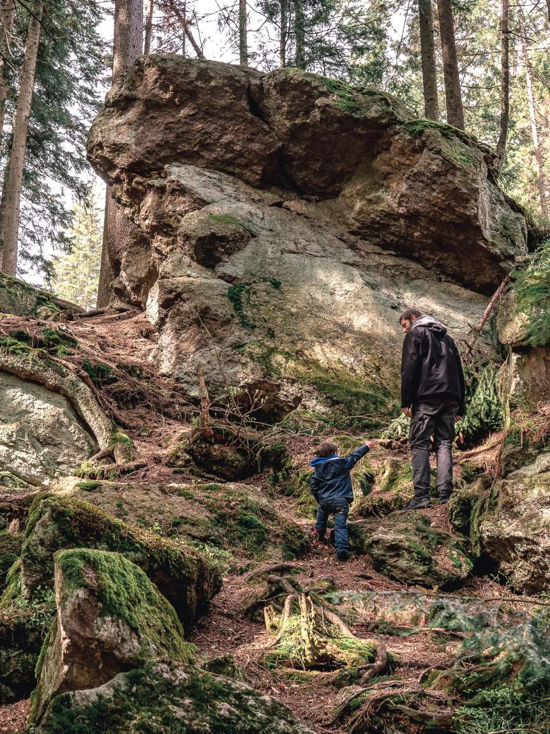 Forêt Sumava en République Tchèque