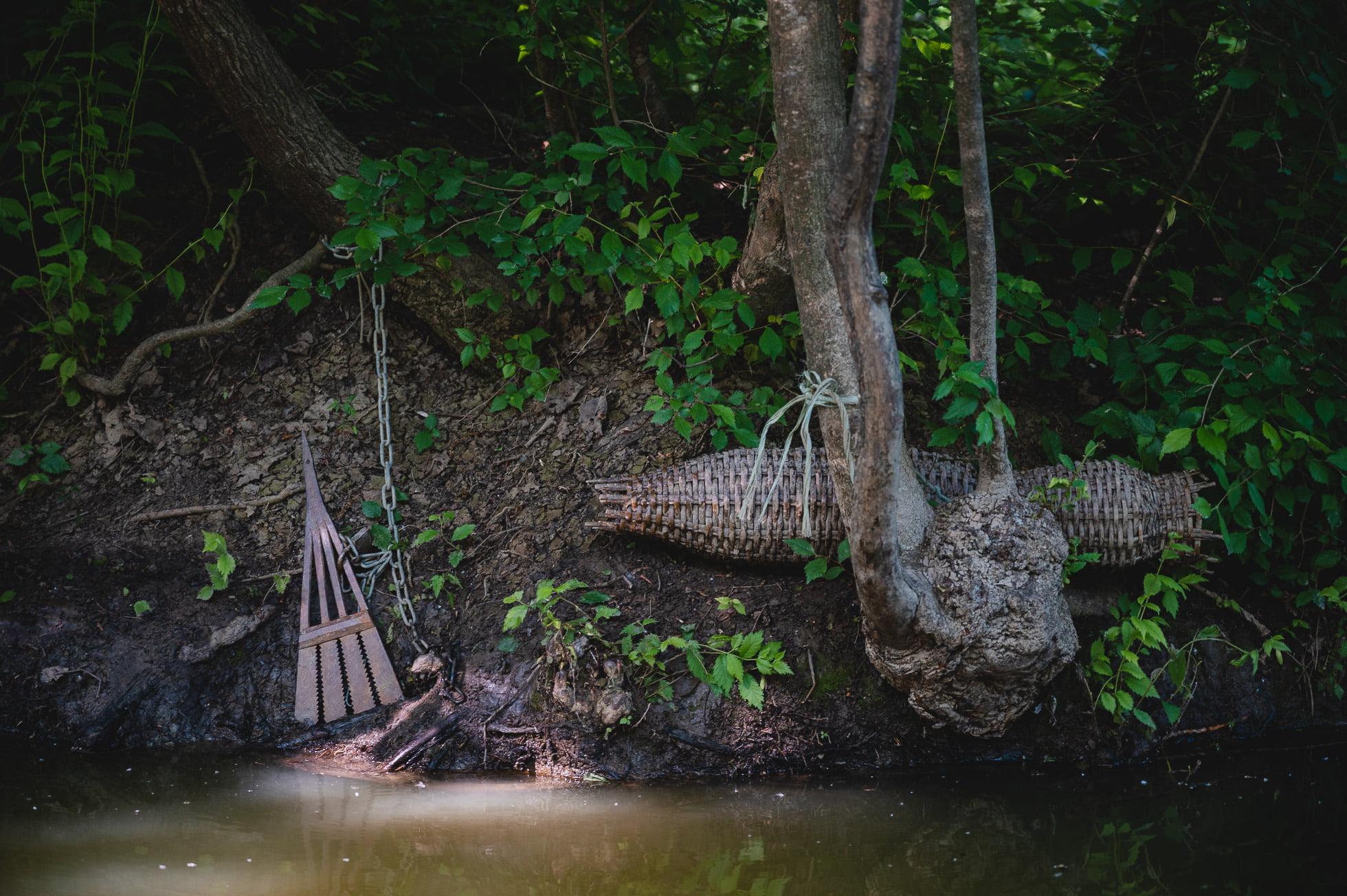 marais poitevin 8225 1 - Les globe blogueurs - blog voyage nature