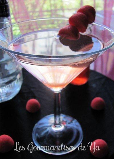 Vodka Tonic Tagada LGY