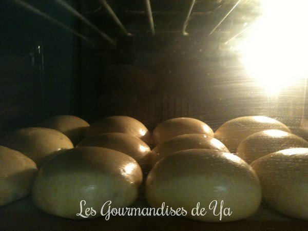 Petit pain au lait LGY 03