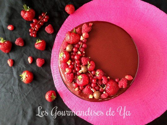 entremets-fruits-rouges-chocolat-noir-022-lgy