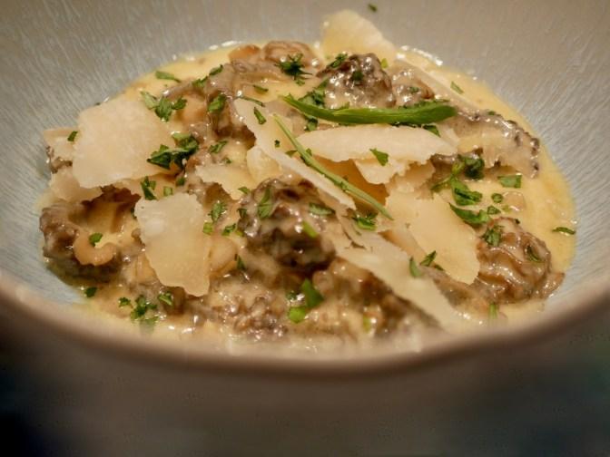 Morilles fraîches. Crème à l'estragon et parmesan.