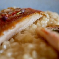 Filets de rougets barbet. Risotto au safran.