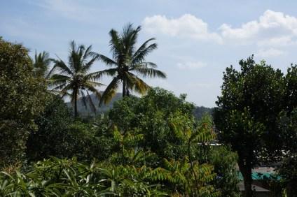 La vue depuis notre guest house