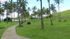 La plage d'Anakena