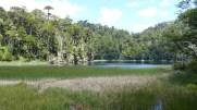 Certaines zones des lacs sont marécageuses
